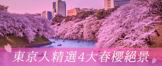 東京人精選4大春櫻絕景