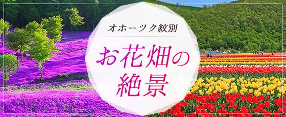 ZEKKEI Japan編集部厳選!オホーツク紋別 お花畑の絶景