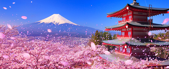 """The Heights of Japanese Scenery: Springtime's Miraculous """"Triple Shots"""""""