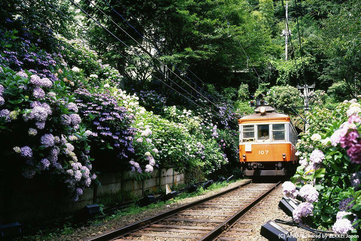 Hakone Tozan Railway Kanagawa