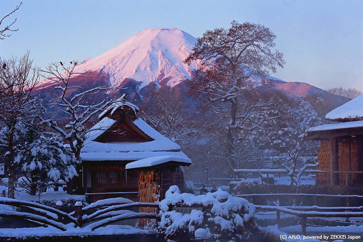 Japan Travel Mt Fuji
