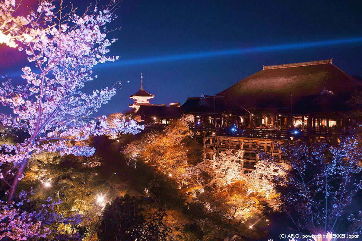 清水寺(京都府)で撮れる3ショット 三重塔×清水の舞台×桜が一度に撮れる!