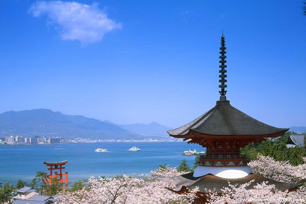 厳島神社(広島県)で撮れる3ショット 塔×鳥居×桜が一度に撮れる!