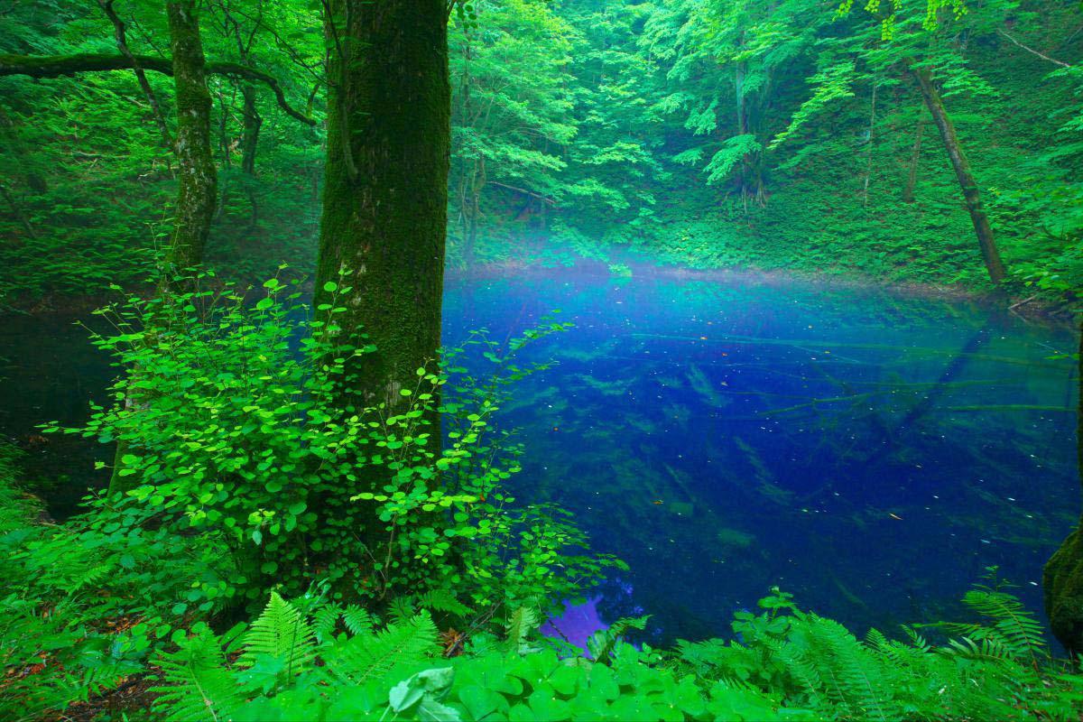 Aoike, Juniko (Twelve Lakes)