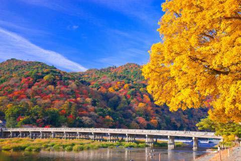 渡月橋の絶景|ZEKKEI Japan