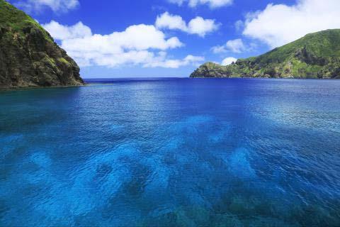 小笠原諸島の画像 p1_24
