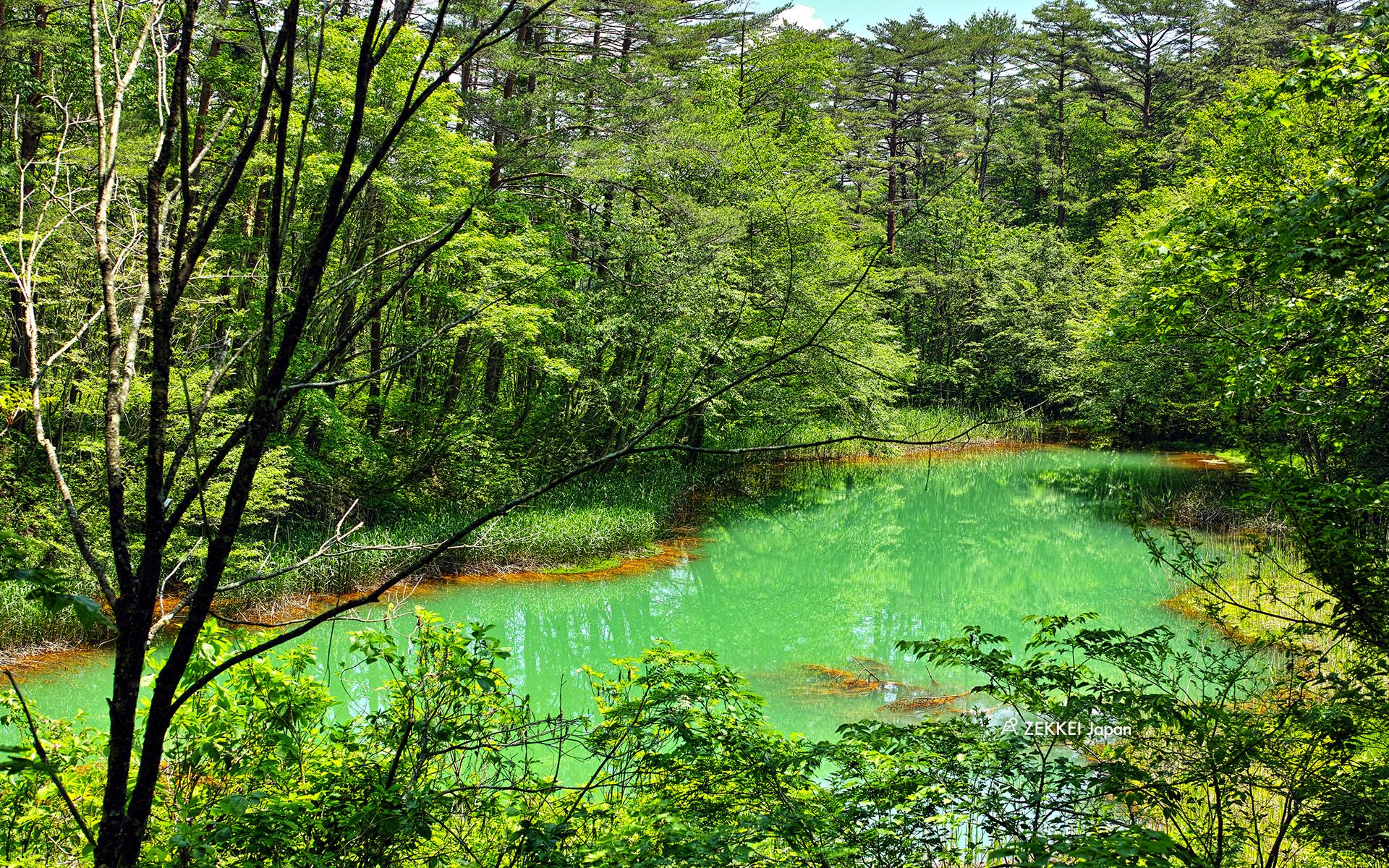 あなたのパソコンスマホに絶景を美しい池のzekkei壁紙をプレゼント