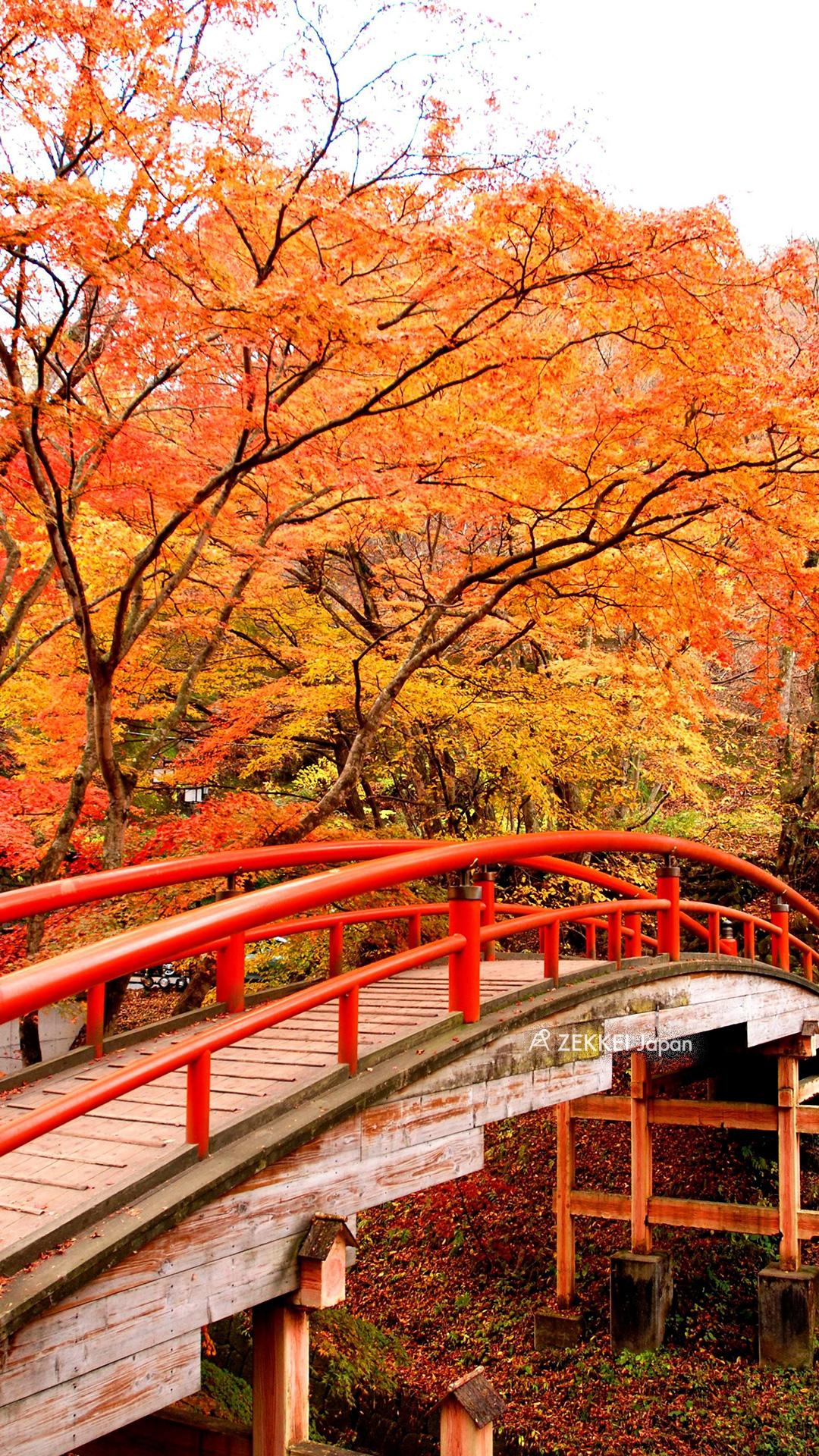 絶景壁紙 色とりどりの紅葉に包まれる 橋 の壁紙を あなたの