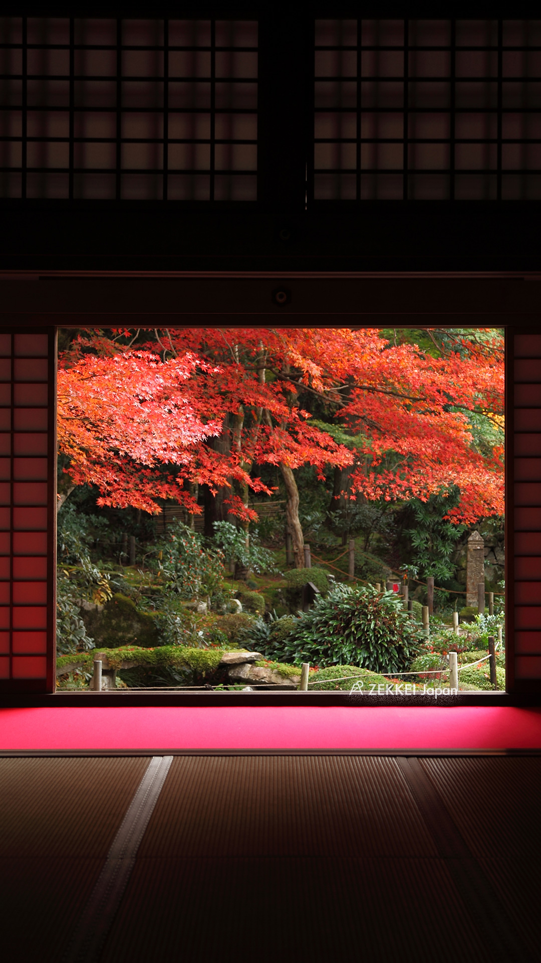絶景壁紙 窓 から愛でる紅葉の壁紙を あなたのパソコンやスマホに Zekkei Japan
