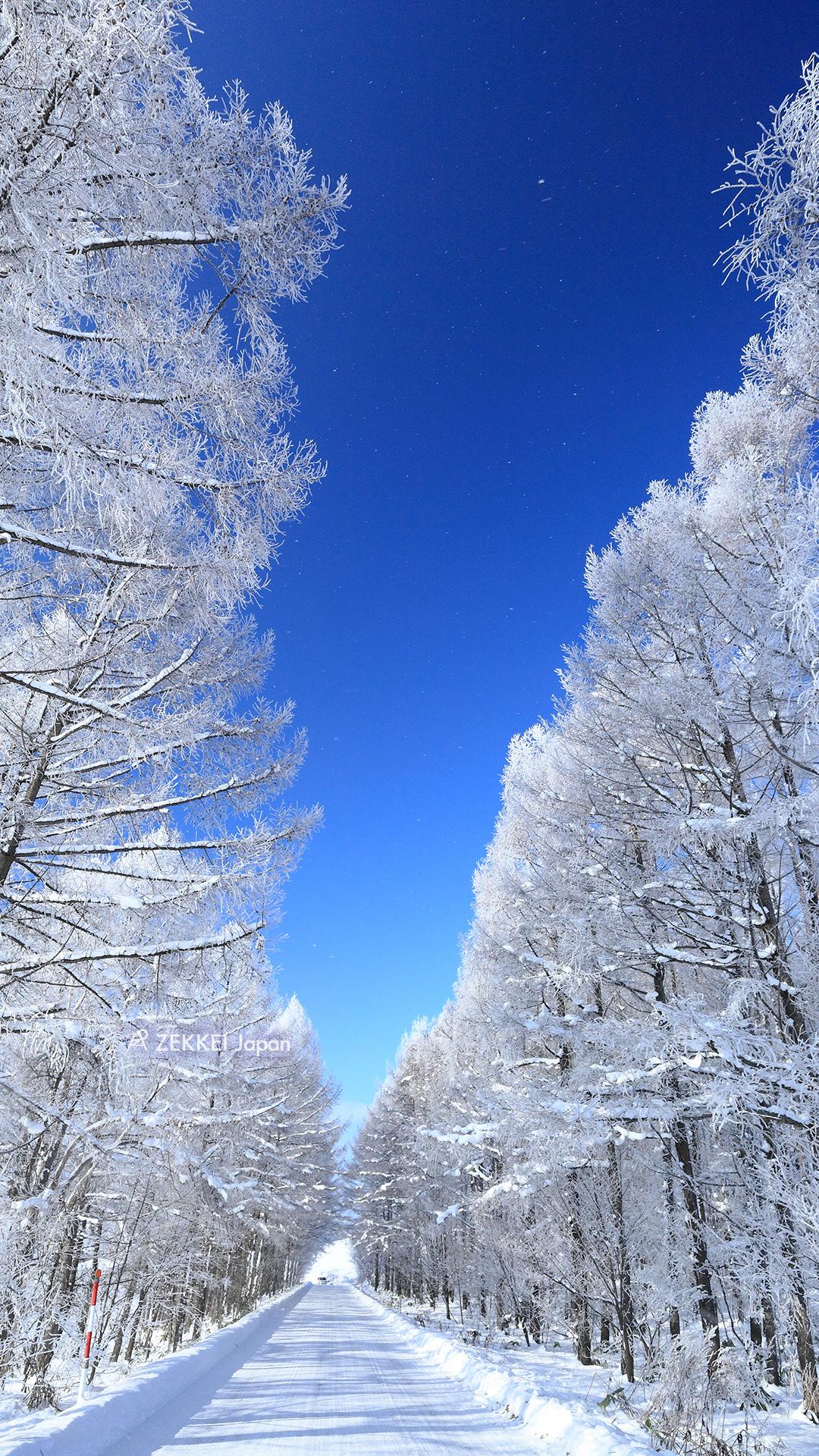 絕景桌布 銀白色世界美瑛桌布大放送 絕景日本