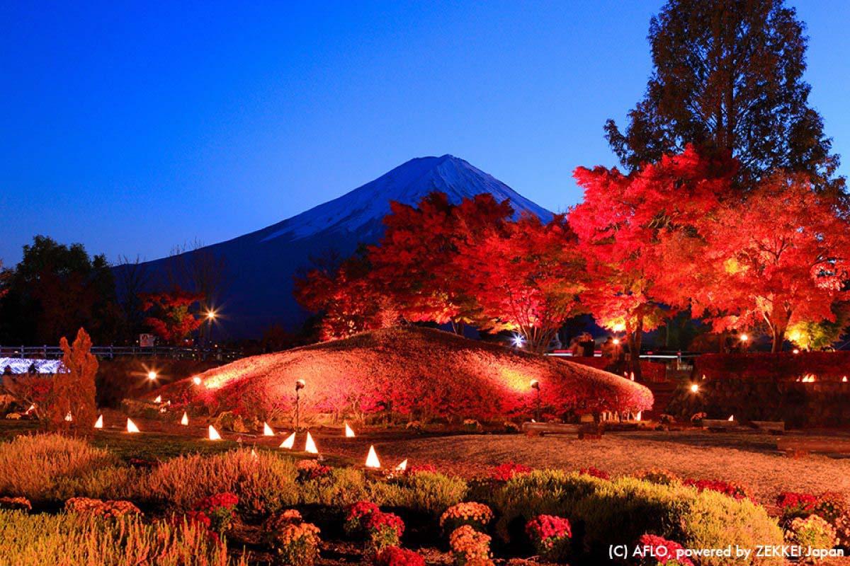 Autumn Leaves Mt Fuji