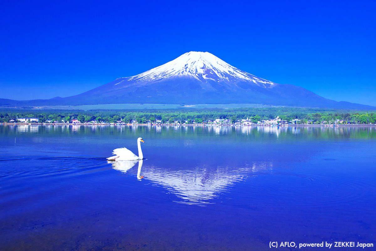 Mt Fuji Lake Japan