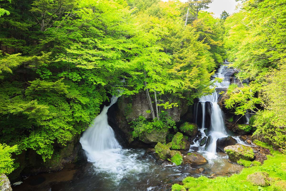 Tochigi Travel Japan