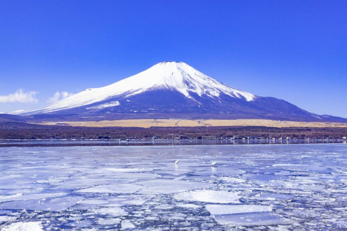 Winter Mt Fuji Travel Japan