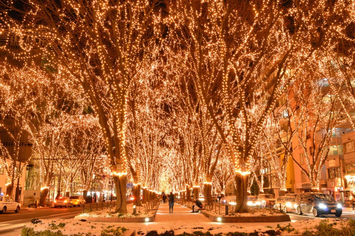 Japan Illuminations Travel