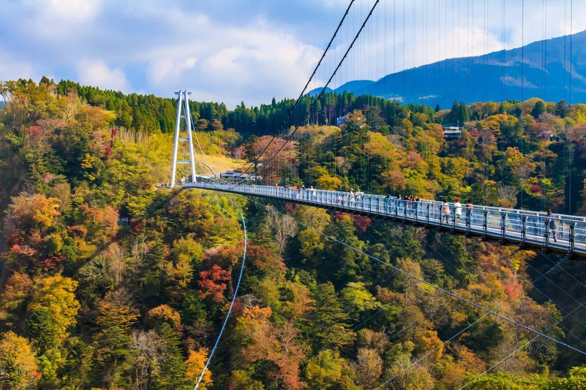 吊り橋 橋