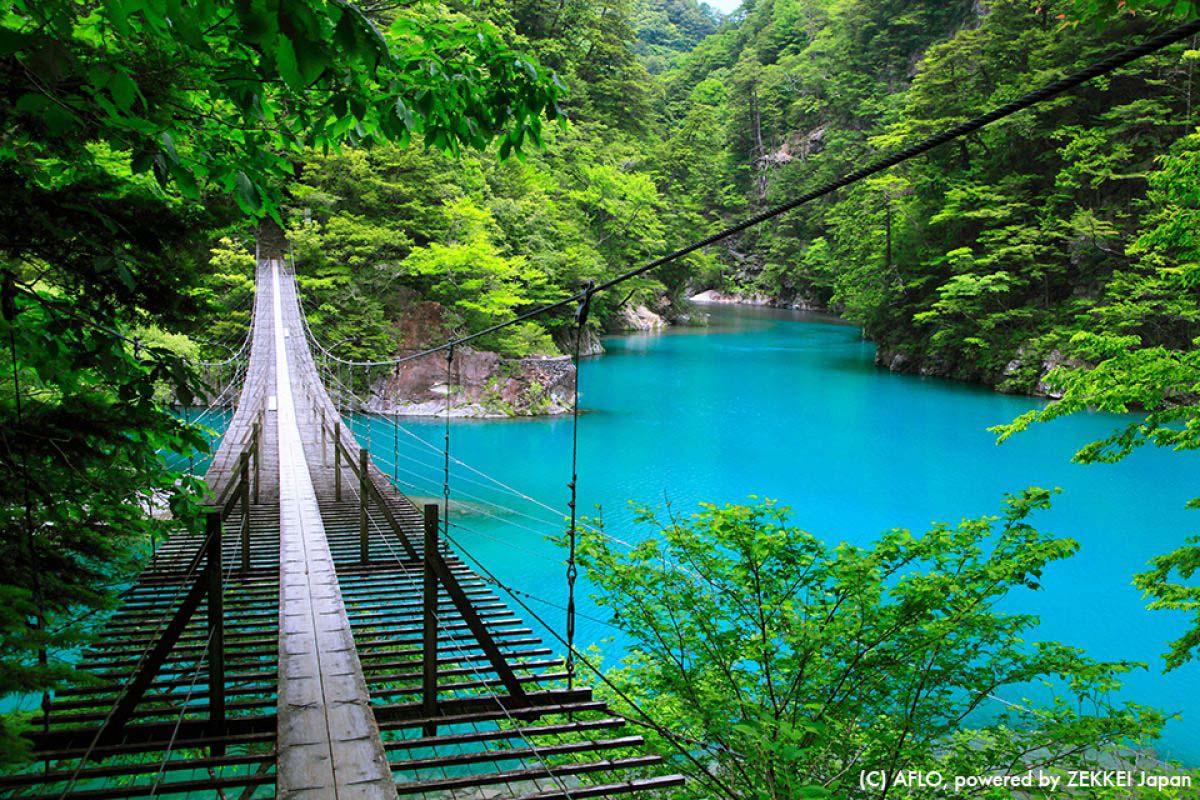 Sumata Valley Shizuoka Bridges