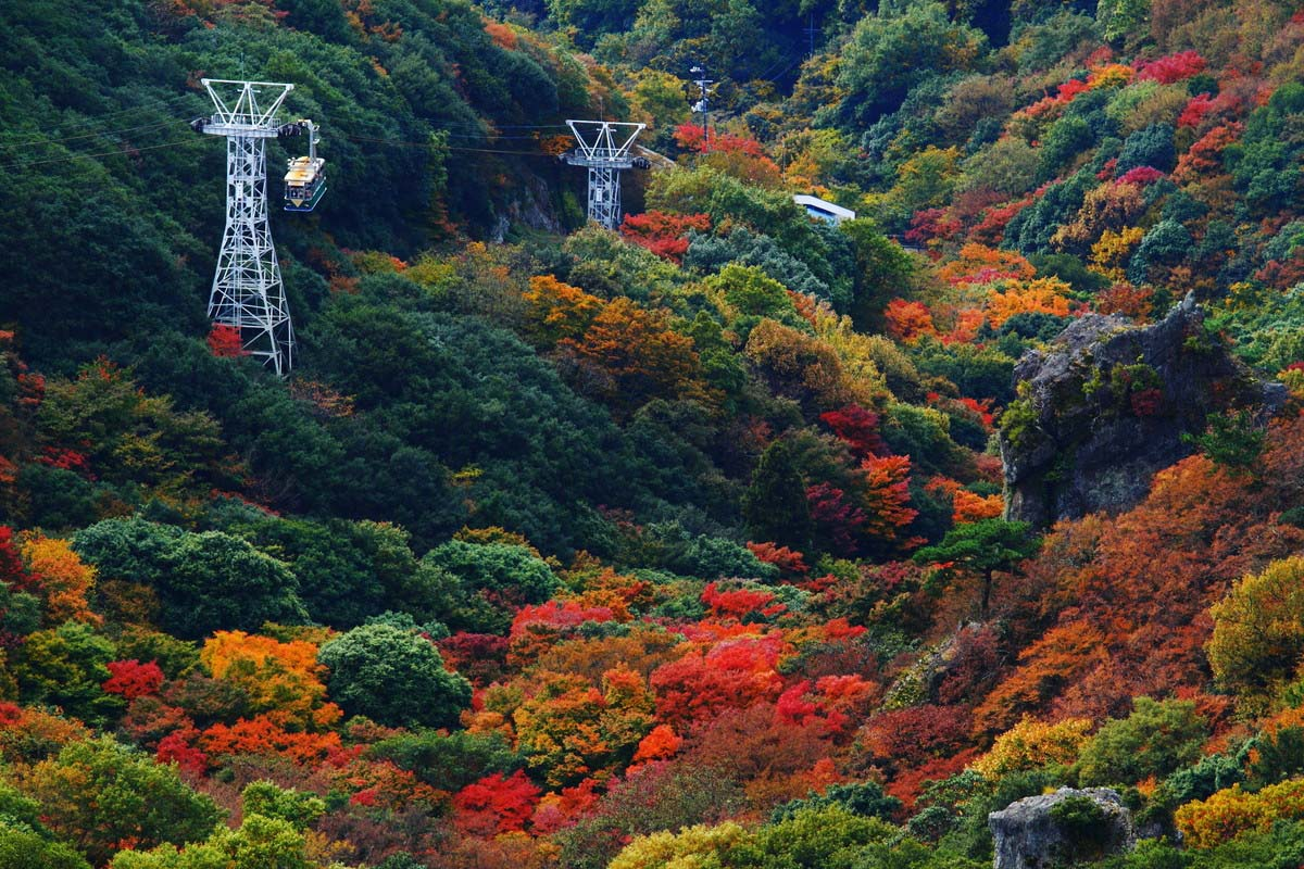 香川 紅葉 富山