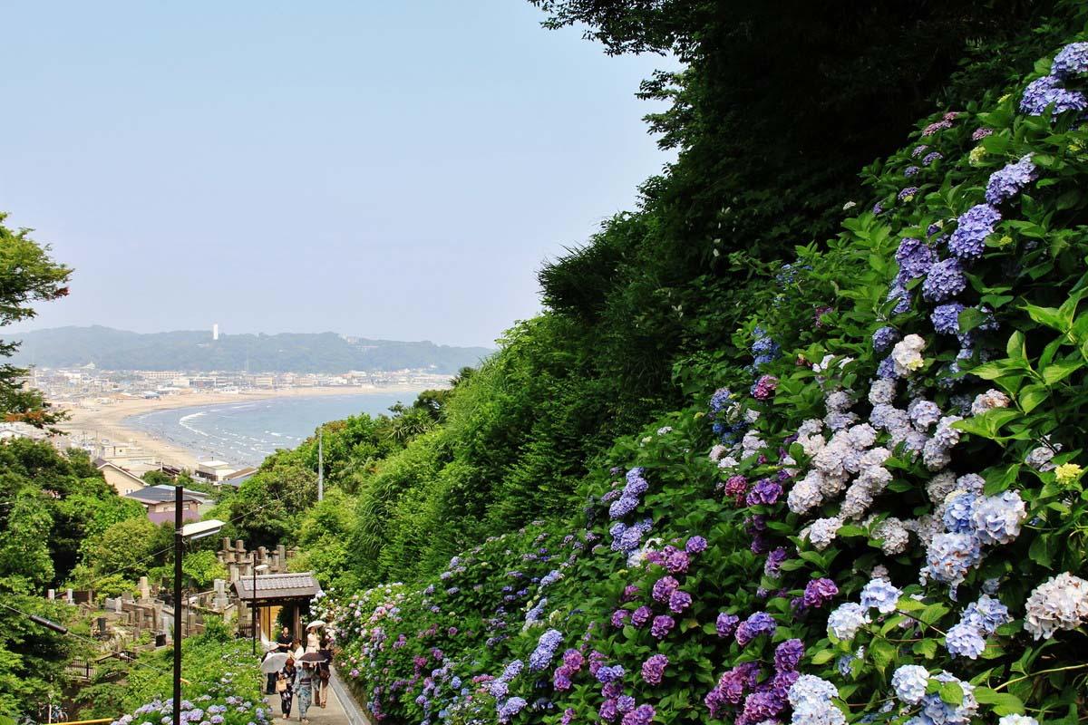 Yuigahama Kanagawa Kamakura Beach