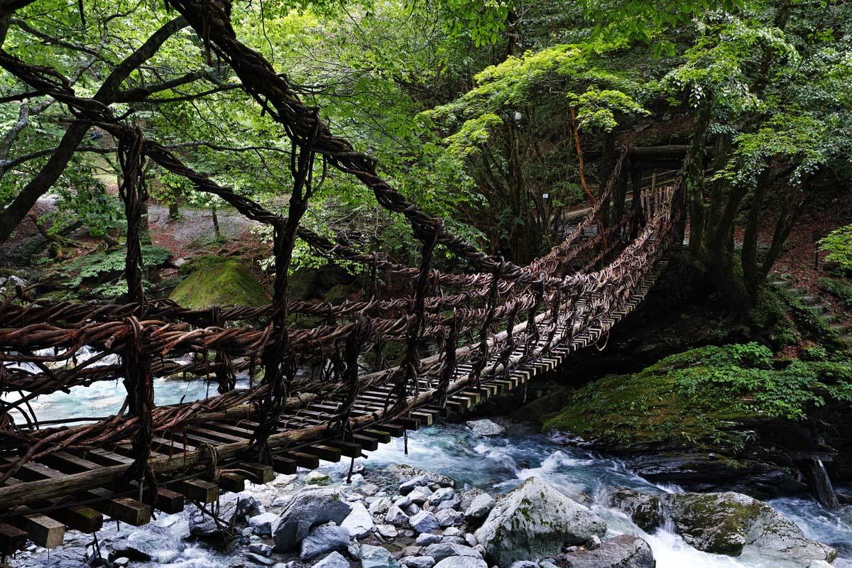 Okuiya Kazura Bridge Tokushima