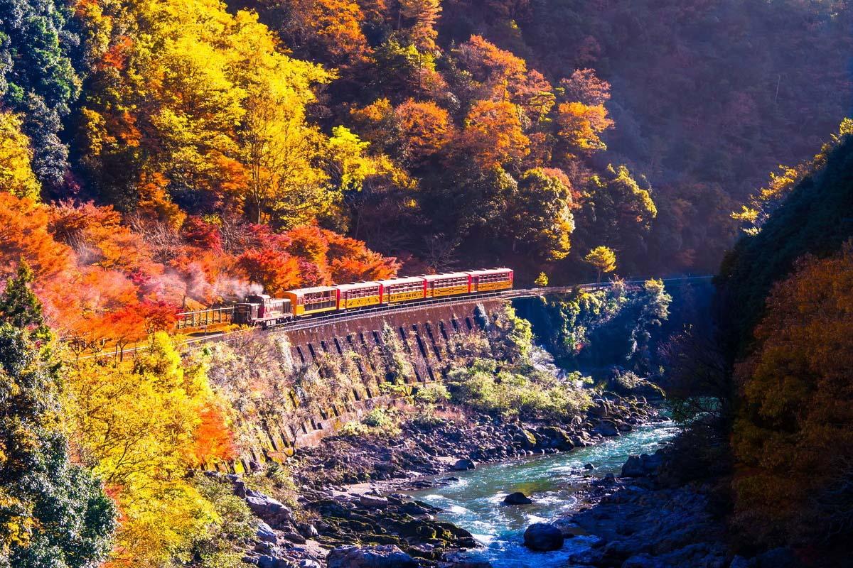 京都 旅遊 紅葉