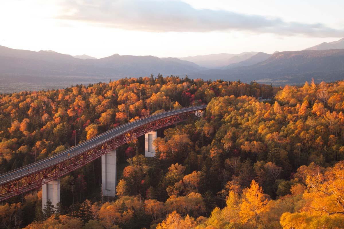 Hokkaido Japan Travel