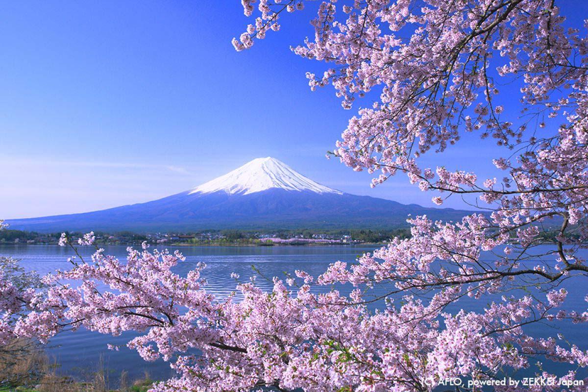 Japan Travel Mt.fuji