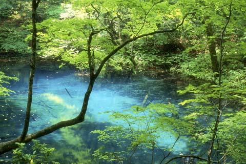 青森 日本 旅遊