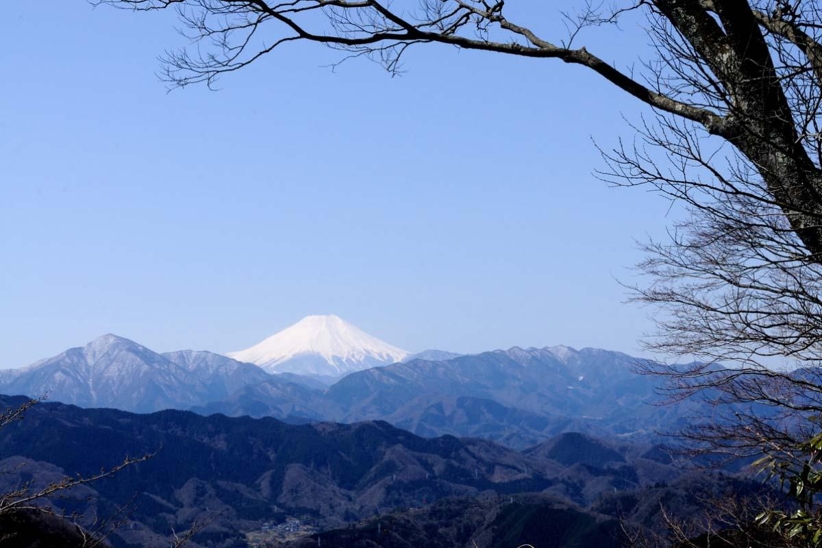 东京 旅游 高尾山