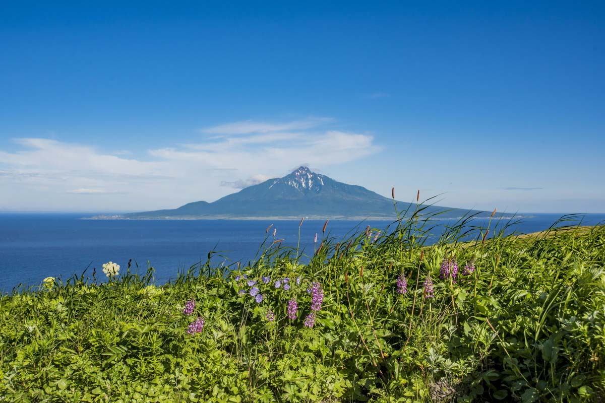 Rebun Island Hokkaido