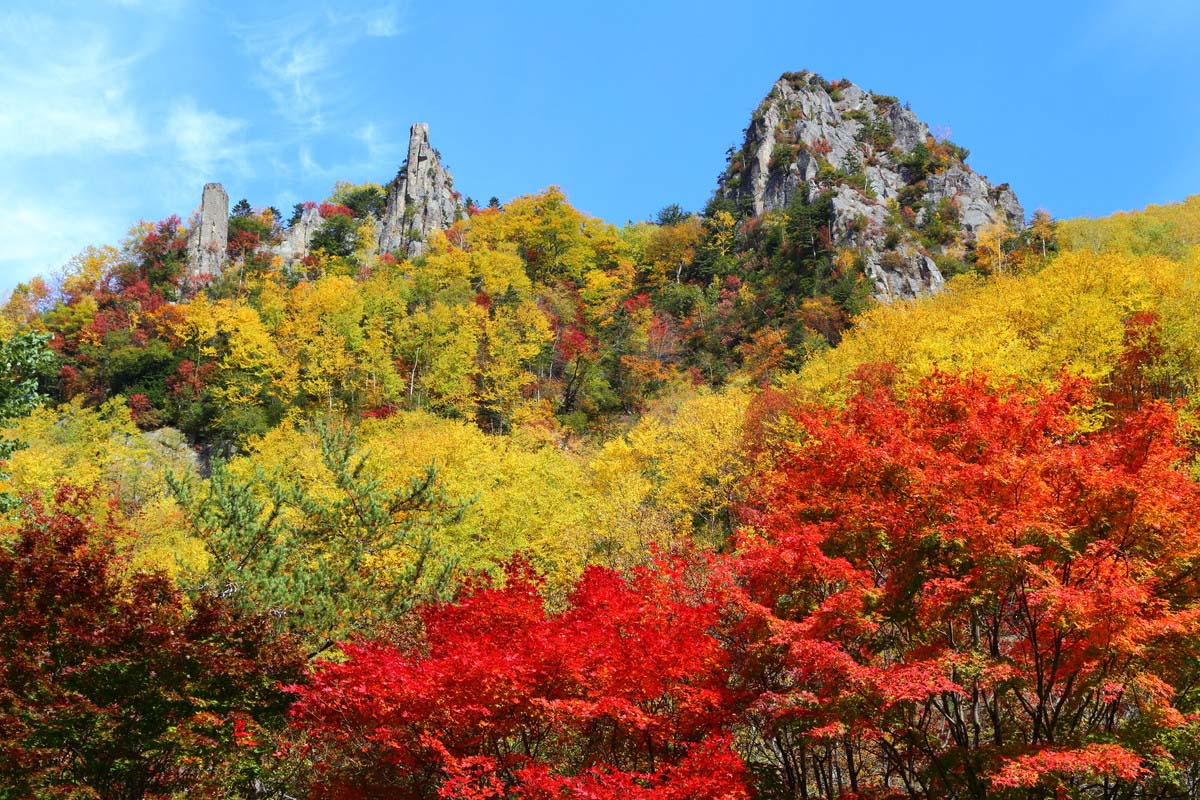 北海道 紅葉 絶景